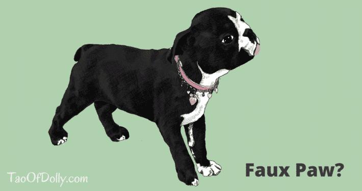 Dolly Faux-Paw
